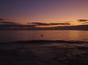 15th Jan 2012 - Pelican floating before dawn