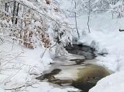 15th Jan 2012 - Winter's here.