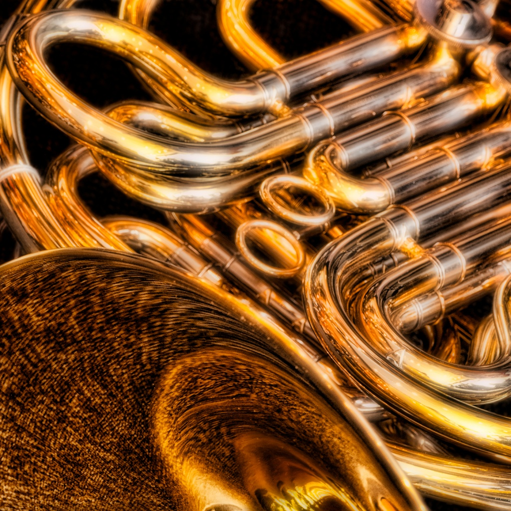 French Horn Detail by clive_crhfoto