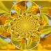 Dizzy Daffodil by filsie65