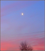 17th Jan 2012 - Gentle Morning Moon