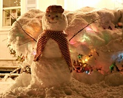 21st Jan 2012 - Snowstorm!