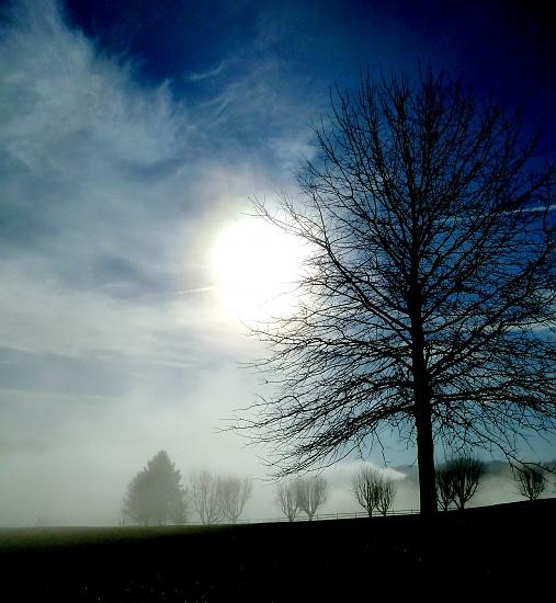 Sunday morning sunrise through the mist.... by calm