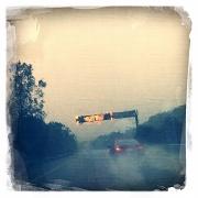 25th Jan 2012 - Low Visibilty