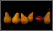24th Jan 2012 - still life #4 - the odd one out