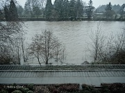 24th Jan 2012 - Jan24-1 Willamette River from hotel balcony