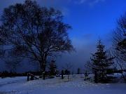 29th Jan 2012 - Cobalt Blue