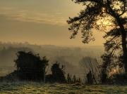 30th Jan 2012 - winter daybreak