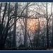 Sun on a Foggy Morning by vernabeth