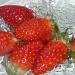 Strawberry Rinse by tonygig