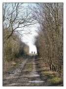 2nd Feb 2012 - On the horizon