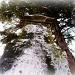 Ground View Tomb Stone by myhrhelper