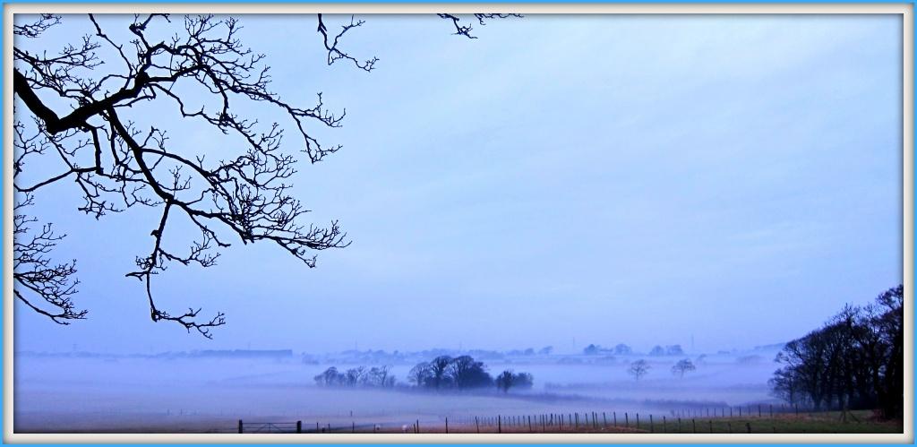 Creeping fog. by happypat