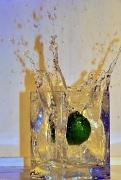 7th Feb 2012 - A Splash of Lime