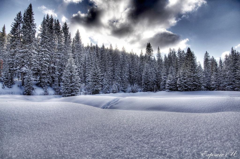 Frosty Landscape by exposure4u
