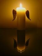 10th Feb 2012 - Angel or Devil ?