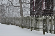 11th Feb 2012 - Fence in a Snowstorm