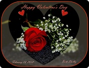14th Feb 2012 - Happy Valentine's Day