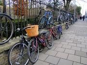 16th Feb 2012 - Two-tier bike racks