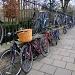 Two-tier bike racks by busylady