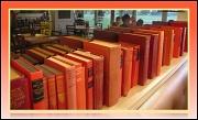 17th Feb 2012 - The Book Thief
