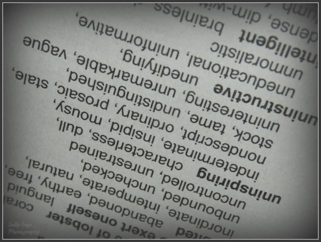Script by salza