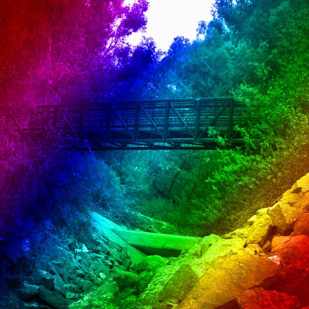 Rainbow Bridge by msfyste
