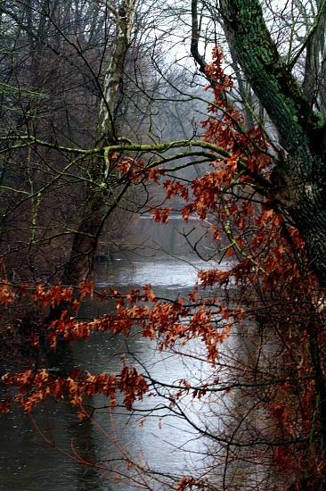 Misty Afternoon by digitalrn