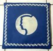 28th Feb 2012 - 2012 02 28 Cushion Cover