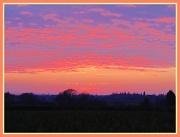 29th Feb 2012 - Pink skies