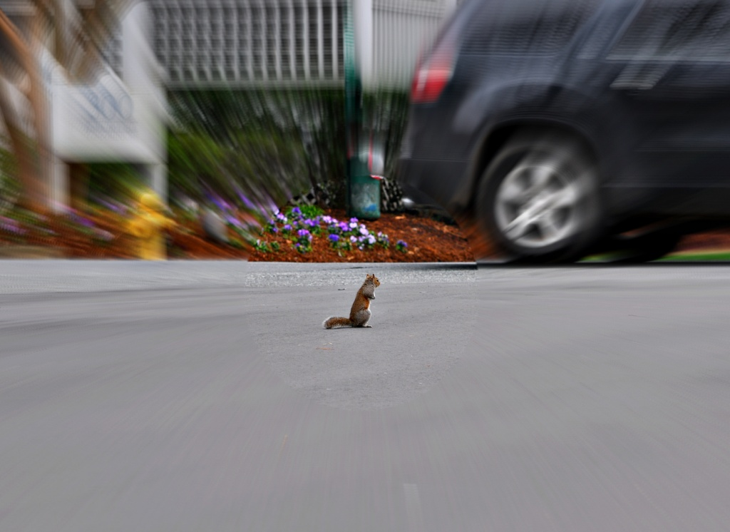 """""""Hey, Slow It Down"""" by peggysirk"""