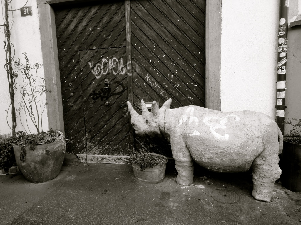 """""""Please do not enter with your rhinoceros"""" by cocobella"""