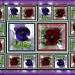pansy portraits by sarah19
