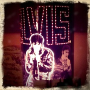 7th Mar 2012 - Hi Elvis