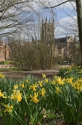 8th Mar 2012 - Spring Time in Worcester