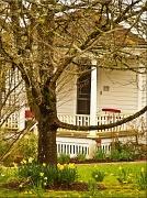 13th Mar 2012 - farm house