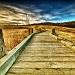Bridge to the Pathway by exposure4u