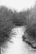 15th Mar 2012 - Bleak Creek