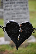 10th Jun 2010 - Age 14_Died of a Broken Heart