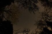 16th Mar 2012 - Stary, stary night...