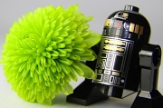 17th Mar 2012 - R2D2 is bringing a flower to his girlfriend...