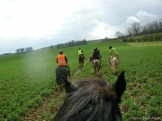 18th Mar 2012 - Lancelot's view