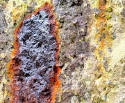 17th Mar 2012 - Rusty Stain On Rock