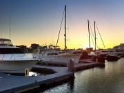 21st Mar 2012 - Safe Harbor