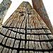 Quandamooka Totem by corymbia