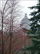 29th Mar 2012 - misty dome