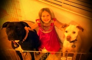 30th Mar 2012 - Caged with dogs