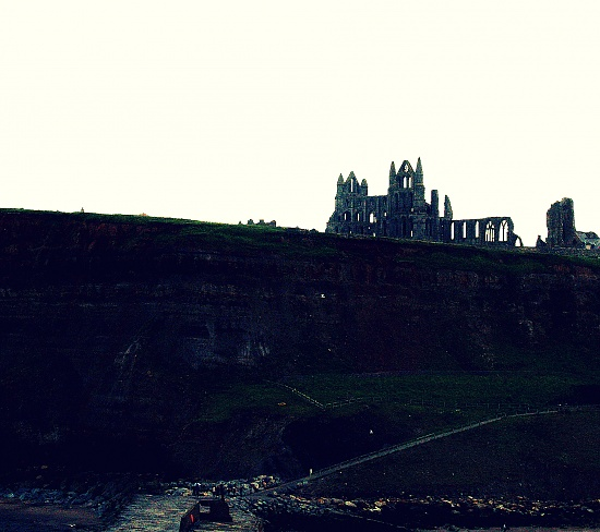 Whitby Abbey  by rich57