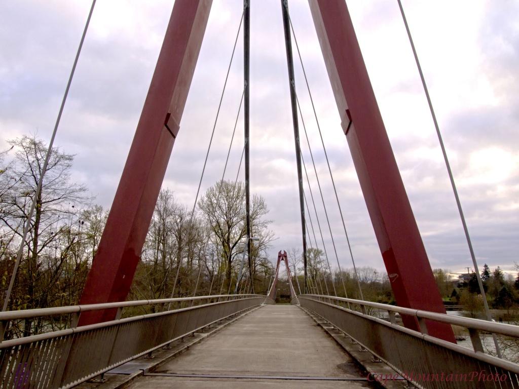 Pedestrial Bridge Over the River by jgpittenger