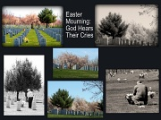 9th Apr 2012 - Easter Mourning: A Tribute